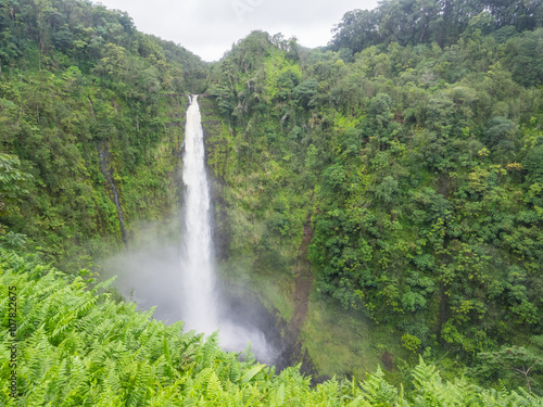 Poster Parc Naturel Akaka Falls State Park