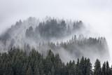 mgła jodła góra mgła wysokość alpy żeglarstwo krajobraz fryz - 107824213