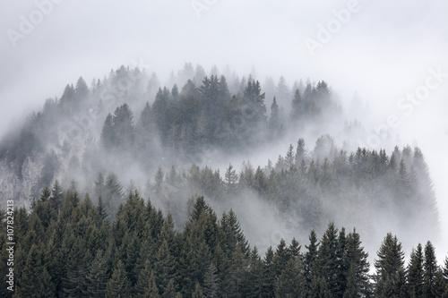 mgla-jodla-zamontowac-mgla-wysokosc-alpy-zeglowanie-pejzaz-fryz