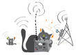 radio operator cat dreams of a new generation of technology/Cats are more and more use of new technology innovations