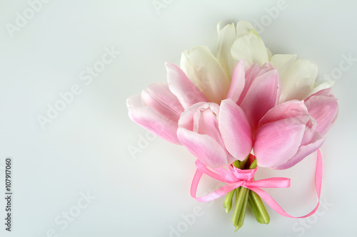 Garden Poster Floral pink and white tulips are associated with pink ribbon on white isolated background