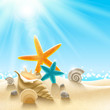 Soleil, plage et coquillages