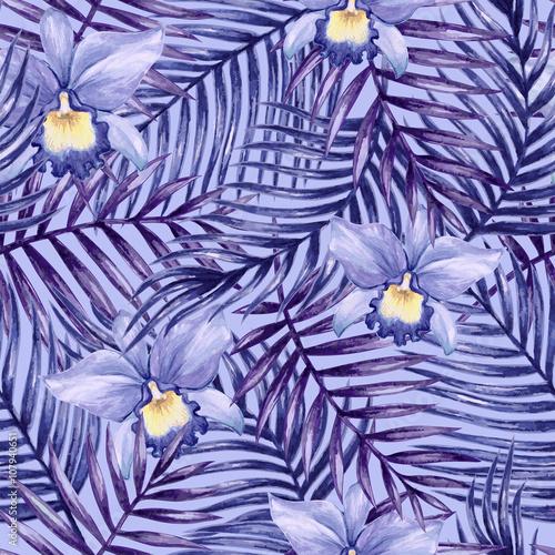 storczyki-niebieskie-tlo