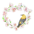 Bird, cherry, apple, flowers. Watercolor isolated object.