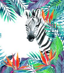 Fototapeta na wymiar Tropical jungle card. Floral design with zebra on white background.