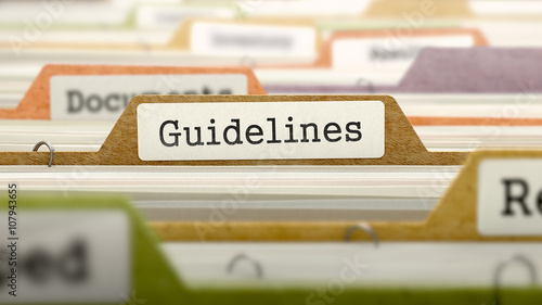 Photo  File Folder Labeled as Guidelines in Multicolor Archive