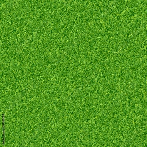 Obraz Green grass background - fototapety do salonu