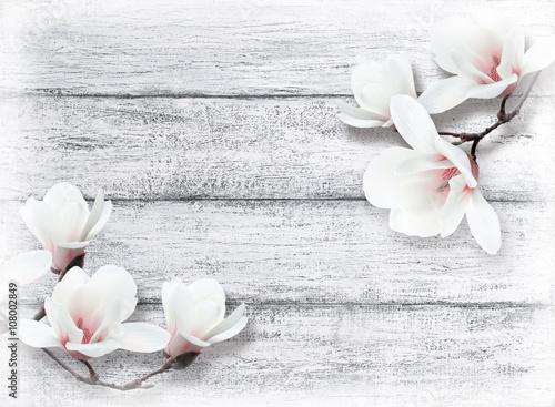 Plakat Magnolia kwitnie na tle podławe drewniane deski