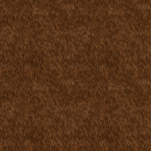 Vector Seamless Pattern. Brown...