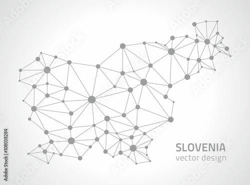Slovenia vector outline map Canvas Print