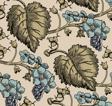 Vintage Background With Blooming Beautiful Flowers. Grape. Flora. Wildflowers. Vector Illustration.