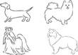 4 dog breeds