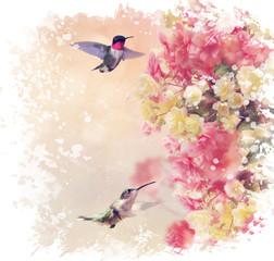 Fototapeta Hummingbirds and Flowers Watercolor