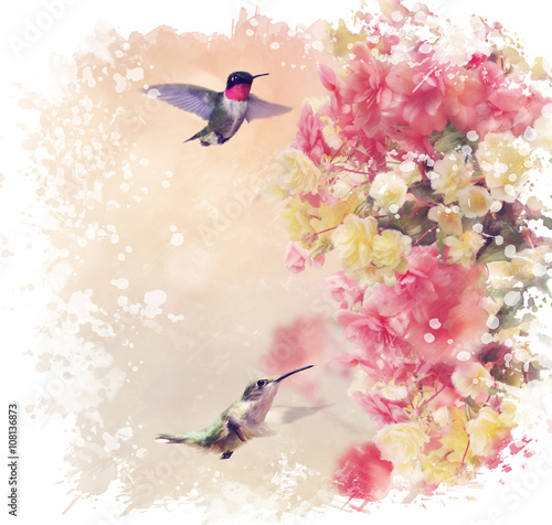 hummingbirds-and-flowers-watercolor