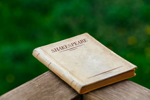 A Book By Shakespeare On Green Background