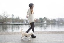 Japanese Woman Walking Dog Near Lake