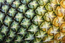Abstract Close-up Texture Details Background Of Pineapple Fruit Skin