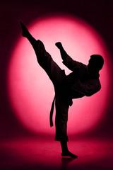 Fototapeta Sztuki walki Karate kick