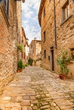 Fototapeta Uliczki - Old streets of greenery a medieval Tuscan town