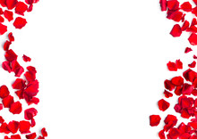 Romantic Background Of Red Rose Petals
