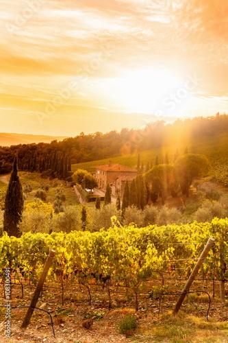 Deurstickers Toscane Tuscany, panoramic landscape - Italy