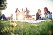 canvas print picture - Friends having picnic