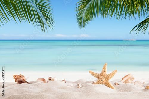 Printed kitchen splashbacks Light blue Summer sandy beach with blur ocean on background