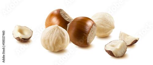 Obraz Hazelnut nut group many horizontal isolated on white background - fototapety do salonu