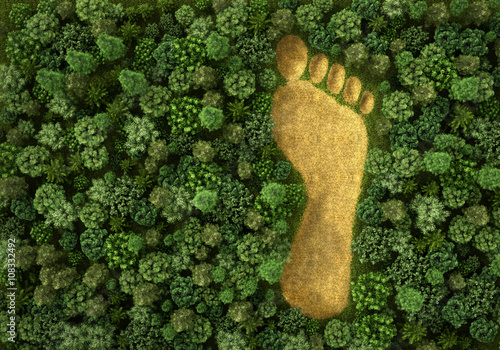Cuadros en Lienzo Concept of ecology. Imprint of human footprint in nature. It was