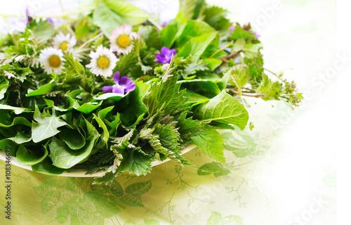 Fotografie, Obraz  Essbare Kräuter und Blüten im Frühling, Frühjahrskur mit frischem Salat aus Wild