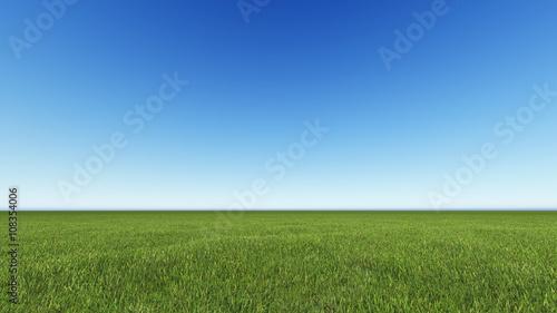 Fotografía  Beautiful landscape, grass clean blue sky