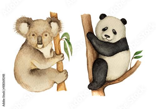 Door stickers Koala Watercolor Koala and Panda sitting on the tree.