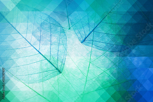 Tuinposter Decoratief nervenblad Decorative skeleton leaves, abstract background