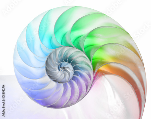 Printed kitchen splashbacks Spiral Nautilus in Regenbogenfarben