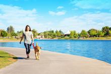 Woman And Dog Walking Along Lake In Park