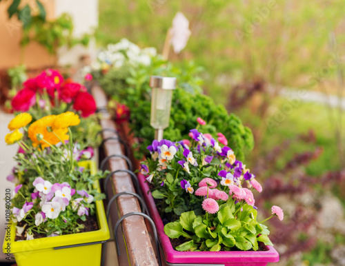 Printed kitchen splashbacks Garden Colorful flowers in pots on the balcony