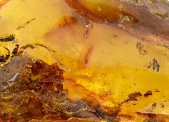 Panel Szklany Do jubilera Baltic amber, resin segments,background or texture