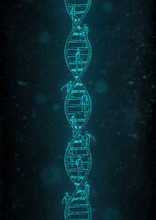 Pinnacle Of The Species / 3D Render Of Male Figures Rushing Up Dna Double Helix Structure