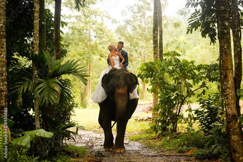 Fotografia  bride and groom riding on a elephant