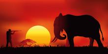 Chasse à L'élephant - Coucher De Soleil