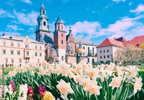 Poster Cracovie весенний краков