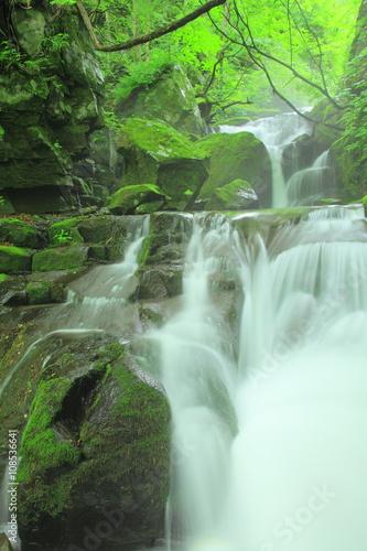 Keuken foto achterwand Watervallen 奥入瀬渓流 寒沢の流れ