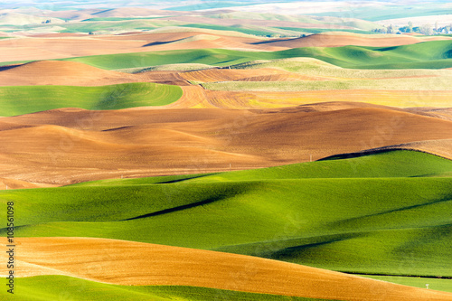 Fotografie, Obraz  Palouse Region Steptoe Butte Farmland Rolling Hills Agriculture