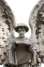 Statue Of A Peaceful Angel Reading A Scroll With Isolated Background