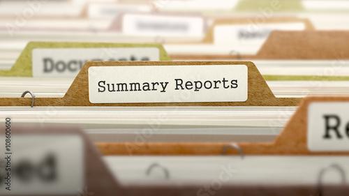 Fotografie, Obraz  File Folder Labeled as Summary Reports in Multicolor Archive