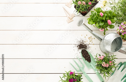 Fototapeta Spring - gardening tools and flowers in pots on white wood