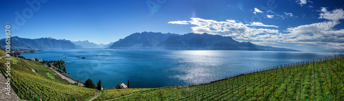 Foto  Famouse vineyards in Montreux against Geneva lake.