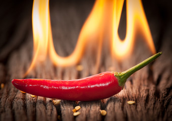 Naklejka Popularne Red chili pepper with fire