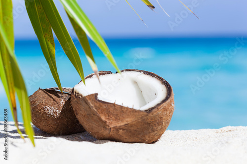 Broken brown coconut on sandy beach