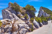 On Gibraltar Rock.